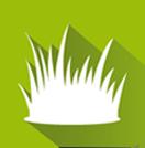 élagage ou abattage d'arbres à Caen (Calvados - 14)