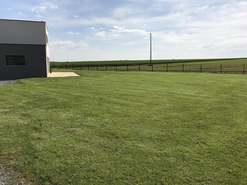 engazonnement à Caen - Plantation du gazon (pelouse)