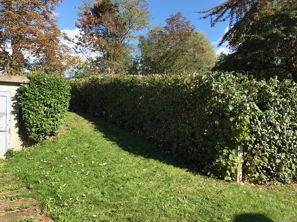 Après le nettoyage et la remise en état du jardin à Caen (Calvados -14)