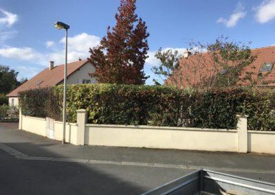 taille de haies et d'arbustes à Caen et Bayeux - Paysagiste AVAE (Après)