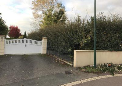 taille de haies et d'arbustes - Paysagiste à Caen et Bayeux (Avant)
